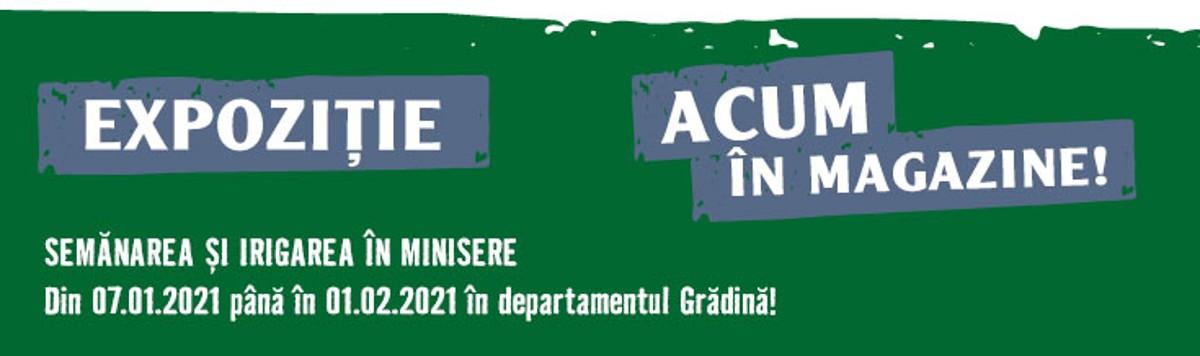 Semanarea si irigarea in minisere Noutati Gradina program 735x218 2