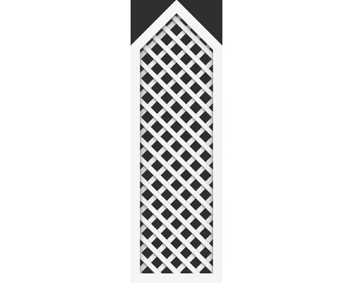 Element parțial BasicLine tip P 70 x 215/180 cm, alb