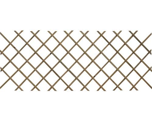 Spalier oblic, 60x180 cm, cu suruburi