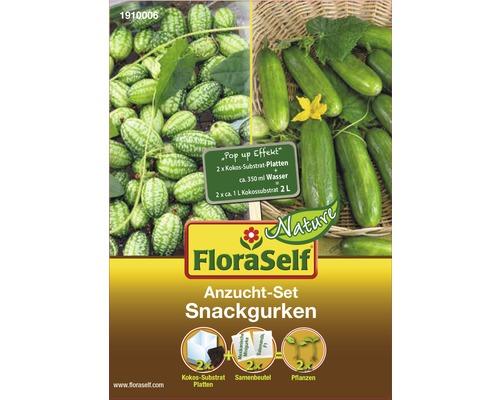 FloraSelf Set semanare castraveti snack