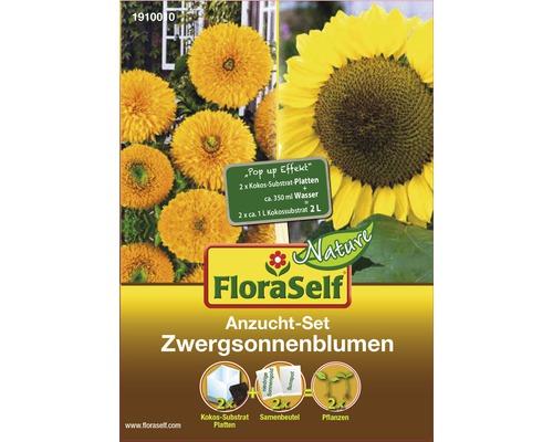 FloraSelf Set semănare floarea soarelui
