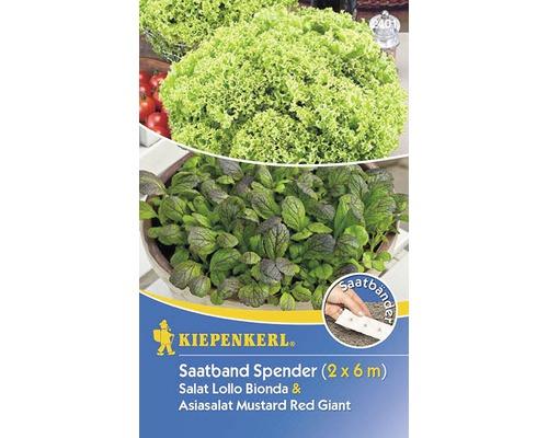 Cutie de seminte de salata Lollo si asiatica bio, Kiepenkerl