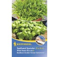 Cutie de seminte de rucola salbatica bio