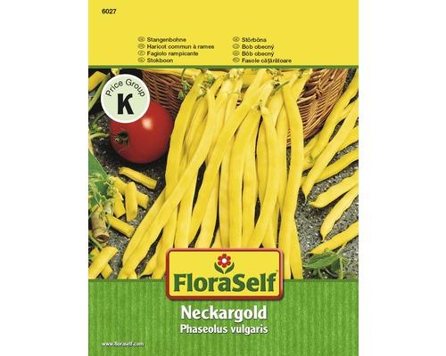 """FloraSelf seminte de fasole urcatoare """"Aurul Neckarului"""""""