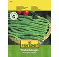"""FloraSelf seminte de fasole urcatoare """"Regina de pe Neckar"""""""