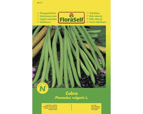 """FloraSelf seminte de fasole urcatoare """"Cobra"""""""