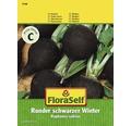 FloraSelf seminte de legume ridiche rotunda de iarna
