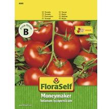 """FloraSelf semințe de roșii """"Moneymaker"""""""