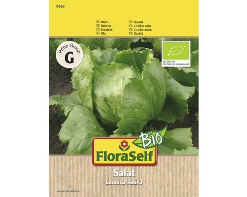 FloraSelf semințe de salată iceberg bio