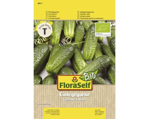 FloraSelf seminte de castraveciori bio