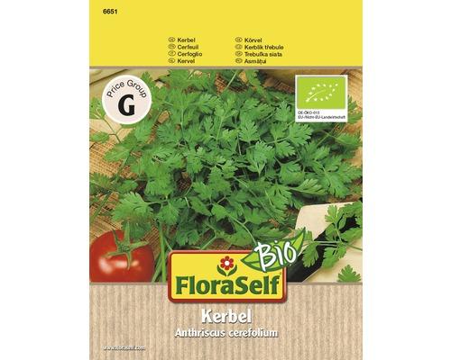 FloraSelf seminte de hasmatuchi bio
