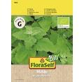 FloraSelf seminte de loboda bio
