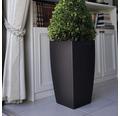 Ghiveci tip vaza Lafiora, material plastic, 31x31x57 cm, antracit, inclusiv set de udare a pamantului si indicator al nivelului de apa