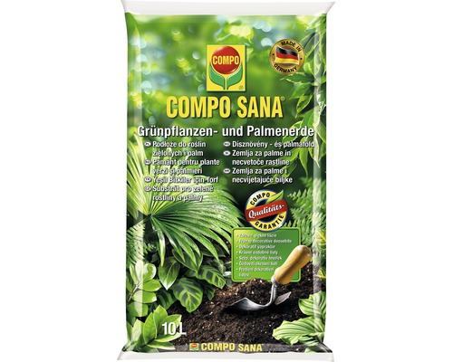 Compo pamant plante verzi
