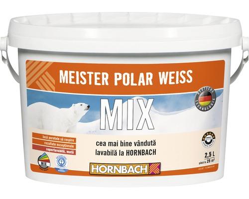Vopsea lavabila Meister Polar Weiss baza A in nuanta dorita 2,5 l