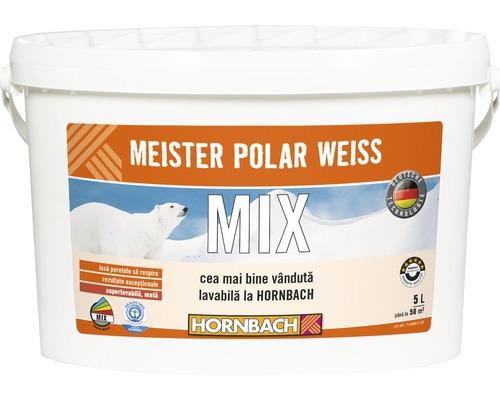 Vopsea lavabila Meister Polar Weiss baza B in nuanta dorita 5 l
