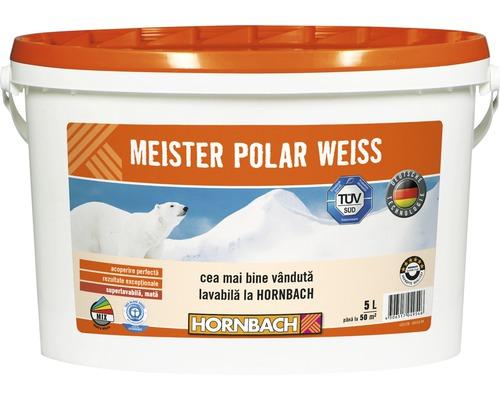 Vopsea lavabila Meister Polar Weiss 5 l