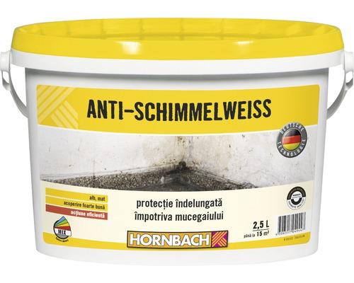 Vopsea antimucegai 2,5 l