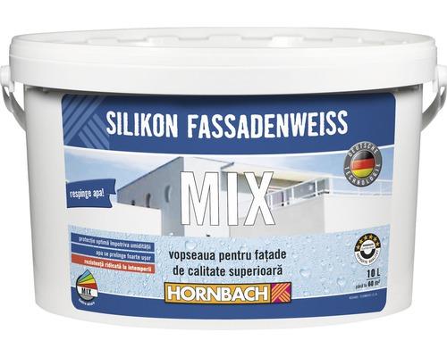 Vopsea pentru fatade pe baza de silicon in nuanta dorita (baza A) 10 l
