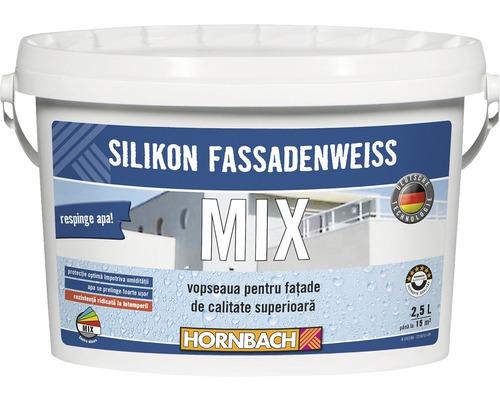 Vopsea pentru fatade pe baza de silicon in nuanta dorita (baza C) 2,5 l
