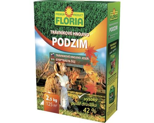 Ingrasamant Floria gazon toamna 2,5 kg