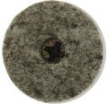 Protectie pasla cu surub Tarrox 24mm, maroniu/nichelat, pachet 28 bucati