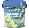 Agent de stabilizare a pH-ului JBL StabiloPond KH 1 kg