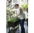 Rasadnita Urban Bloomer cu etajera, 82x78x37,3 cm, maro