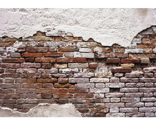 Fototapet zid rosu orange alb 368x254 cm