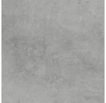 Gresie exterior/interior mată Hometec Grey 60x60 cm