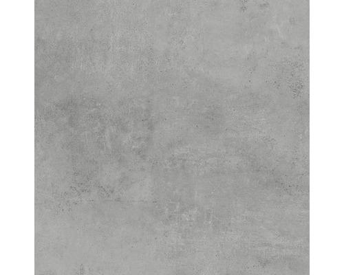 Gresie exterior/interior mata Hometec Grey 60x60 cm