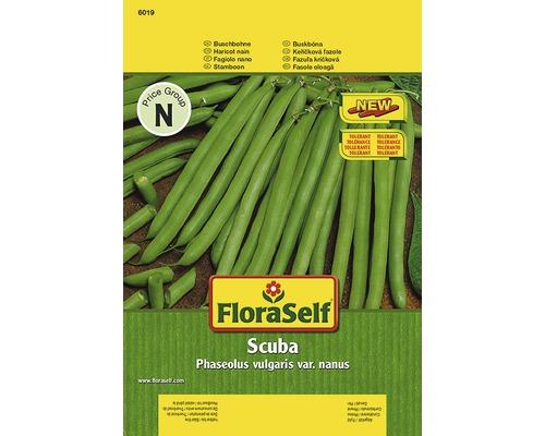 """Seminte de legume FloraSelf fasole """"Scuba"""""""