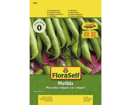 """Seminte de legume FloraSelf fasole cataratoare """"Matilda"""""""