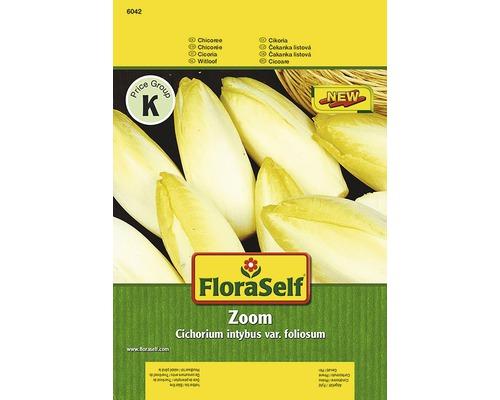 """Seminte de legume FloraSelf, cicoare """"Zoom"""""""