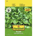 """Seminte de legume FloraSelf, fetica """"Accent"""""""