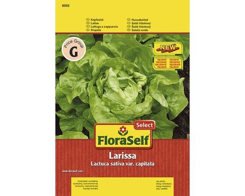 """Seminte de legume FloraSelfSelect, salata verde """"Larissa"""""""