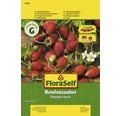 """Seminte de legume FloraSelf, fragi """"Bowlenz"""""""