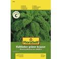 Semințe de legume FloraSelf, varză creață de înălțime medie