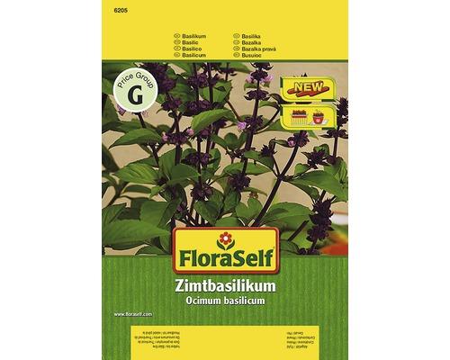 "Seminte de plante aromatice FloraSelf, busuioc scortisoara ""Cino"""