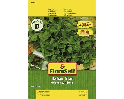Seminte de plante aromatice FloraSelf, busuioc 'Italian Star'