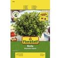 "Seminte de plante aromatice FloraSelf, oregano ""Creta"""