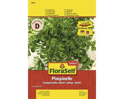 Seminte de plante aromatice FloraSelfSelect, sorbestrea de salata