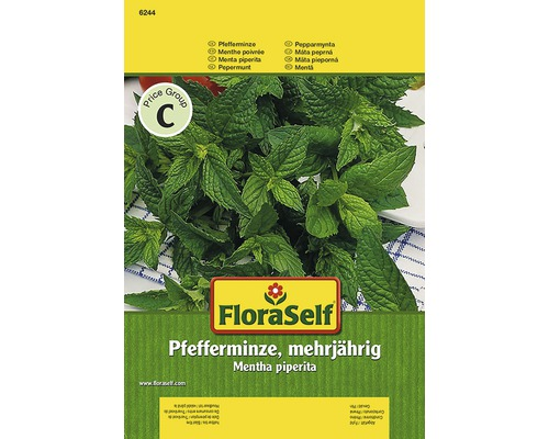 Semințe de plante aromatice FloraSelf, mentă