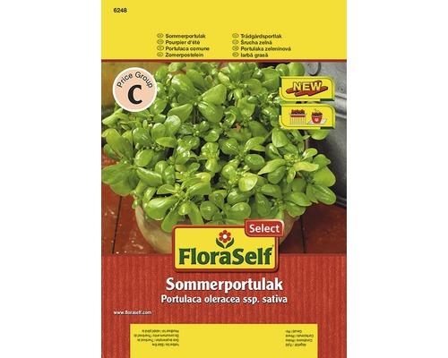 Seminte de iarba grasa FloraSelfSelect