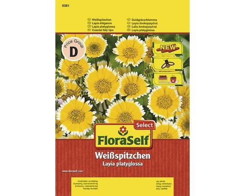 Seminte pentru flori FloraSelfSelect, Layia platyglossa