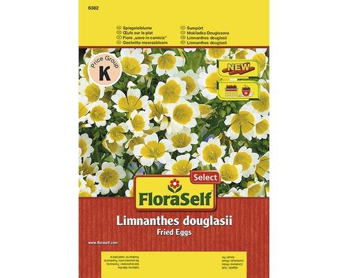 Seminte pentru flori Limnanthes douglasii FloraSelfSelect