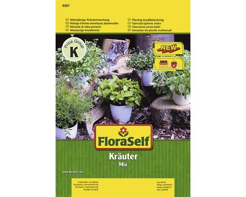Semințe de cimbru de câmp, salvie, sorbestrea de salată, cimbru, roiniță FloraSelf
