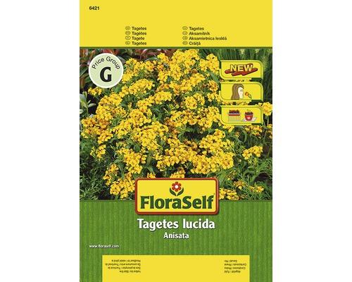 """Seminte pentru flori FloraSelf, craite Tagetes """"Anisata"""""""