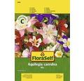 Seminte pentru flori FloraSelf, caldaruse