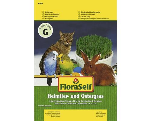 Seminte pentru flori FloraSelf, iarba pisicii si iarba Pastelui